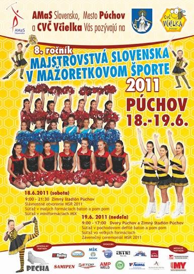 msr2011_plagat